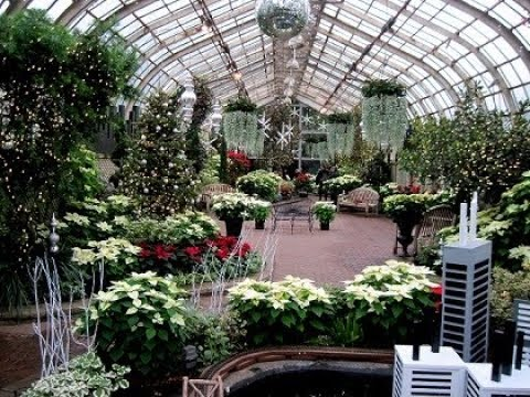 Lincoln Park Conservatory Christmas 2020 Lincoln Park Conservatory at Christmas 2017   YouTube