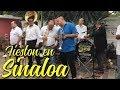 LAS FIESTAS DE SINALOA ASÍ SON