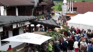Almabtrieb Camping Seeblick Toni Kramsach 2013