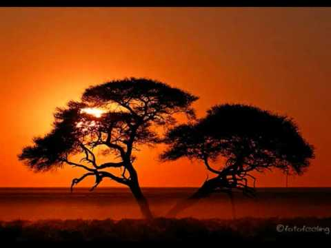 Enya - Storms In Africa