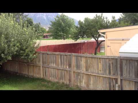 Orem_Utah_home_350_S_700_W_Tel_#_801_358_3864