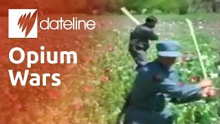 The battle to stop Afghanistan's opium trade