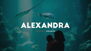 Reality Club - Alexandra (Lyrics)