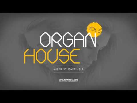 Martino B ● Organ House v005 (March 2016)