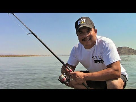 Summertime Fishing At Elephant Butte Reservoir, Watch Where You Step!