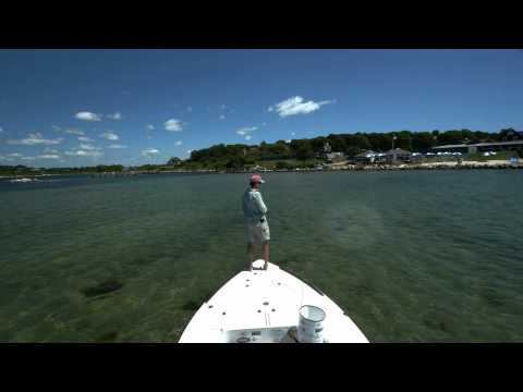 Surf & Inshore Fly Fishing 2011