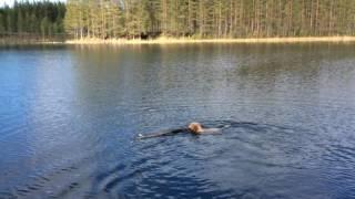 Dante simmar