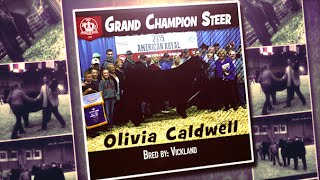 2015 American Royal Winners sold through Willoughby Sales