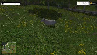 Farming Simulator 2015 - How to farm sheep guide