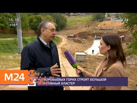 На Воробьевых горах появится большой спортивный кластер - Москва 24
