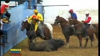 CABALLO MANGA Y COLEO TV... Campeonato Nacional CAT A 2006. Valle de la Pascua-Guarico 2/4