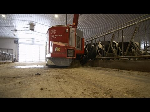 How Robots Are Saving the Dairy Farm