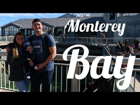 Monterey Bay Aquarium visit