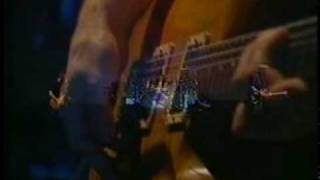 Too many puppies - Primus (live)