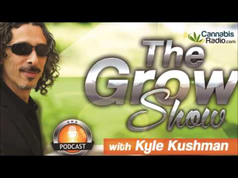 Cannabis Cultivation | Amsterdam VS Colorado | The Grow Show with Kyle Kushman on CannabisRadio.com