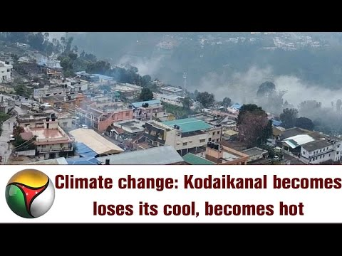 Climate change: Kodaikanal becomes loses its cool, becomes hot