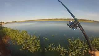 Рыбалка на карася в июле. Ловля на поплавочную удочку.