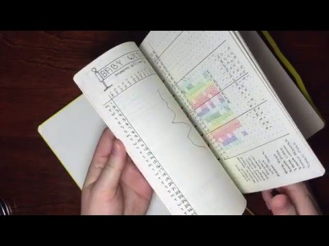 Bullet journal radar chart for tracking wellness
