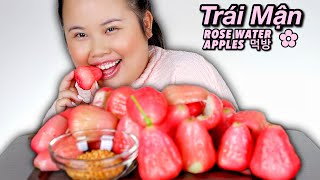 ROSE WATER APPLES (Trái Mận) MUKBANG 먹방 EATING SHOW (EATING SOUNDS) WITH VIETNAMESE Muối Ớt!