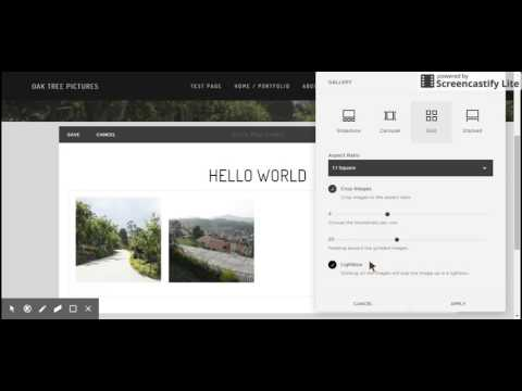 Squarespace  How to add gallery to a page