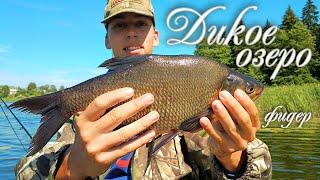 Дикое озеро 15 кг рыбы фидером с лодки