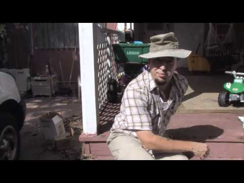 Keeping Bees Away from your Wooden Deck - a HOW TO