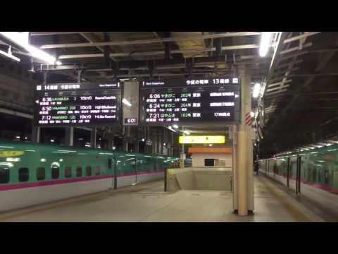 Earthquake hits Japan Train station rocks Tsunami warning