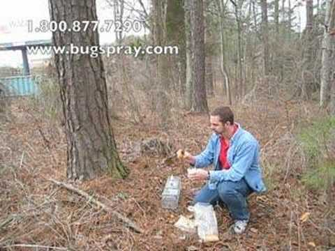 Baiting trap and trailing scent use.