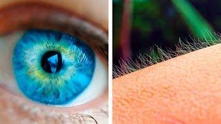 Vücudumuzun Tuhaf Tepkilerinin 11 Basit Açıklaması