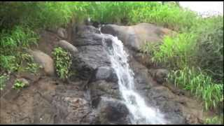 A waterfall Story:Water Fall Tale/Cascade Nature Thumbnail