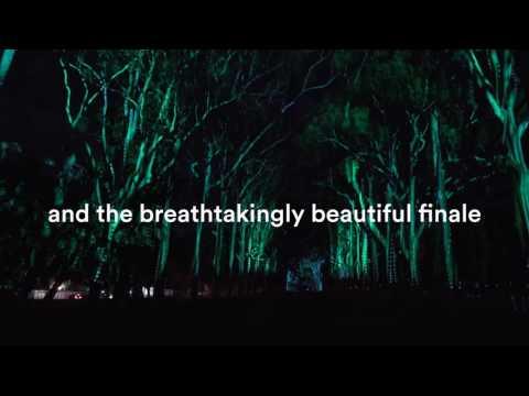 Boorna Waanginy: The Trees Speak Teaser   PIAF 2017