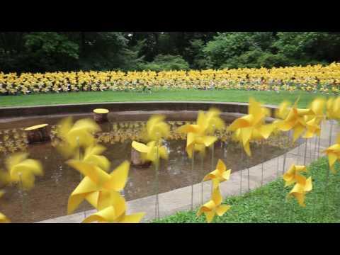 Pinwheels in Prospect Park's Rose Garden
