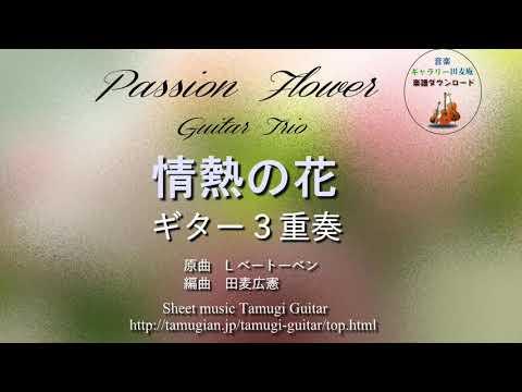 「情熱の花」ギター3重奏 passion flower Guitar Trio