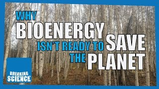 Why Bioenergy Isn't Ready to Save the Planet