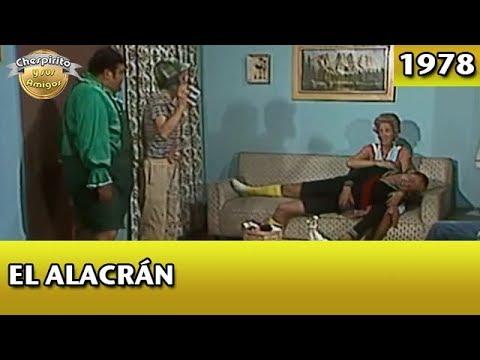 El Chavo | El Alacrán (Completo)