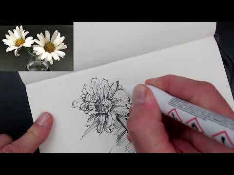 JC On Line online, episode 2 - drawing some daisies