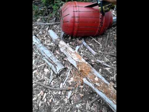 Redneck Septic Tank Youtube