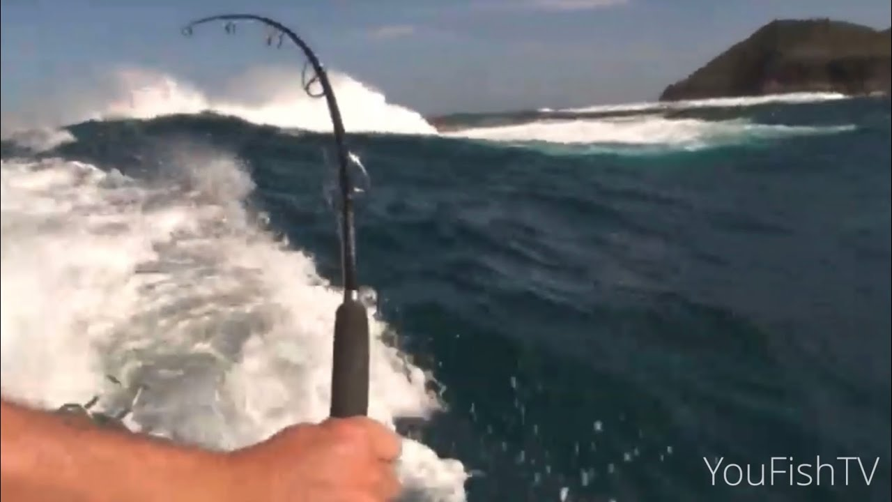 Melbourne kingfish adrenalin youfishtv youtube for Fishing kings free
