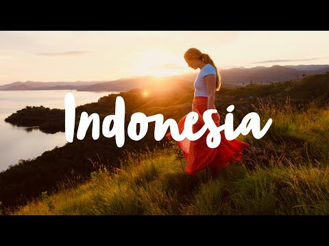 An ADVENTURE in INDONESIA || video by Little Grey Box