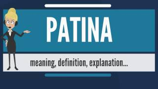 What is PATINA? What does PATINA mean? PATINA meaning, definition & explanation