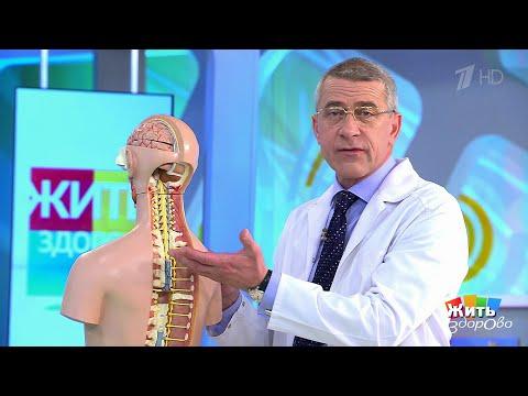 Может ли болеть спина из за шеи