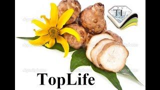 Топинамбур - полезные свойства