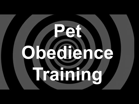 pet-obedience-training-hypnosis
