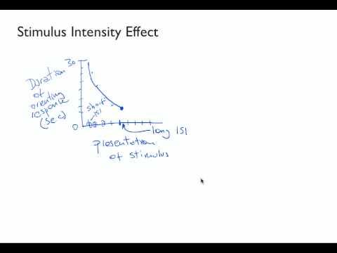 LV3 2 Properties of Habituation