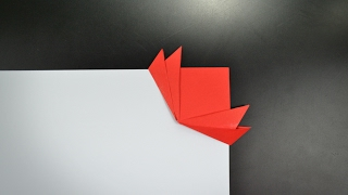 Origami: Lotus Bookmark - Instructions in English (BR)