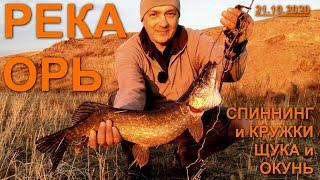Река Орь Спиннинг и кружки Крупная щука и окунь Рыбалка в Актобе Казахстан