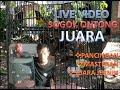 Masteran Sogok Ontong Juara Ngobra Harga Jutaan  Gacor Suara Jernih  Mp3 - Mp4 Download