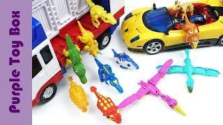 헬로카봇 컨버스터 아이언트 공룡메카드 수쿠스 스피노 장난감 Carbot Transformer And Dinosaur