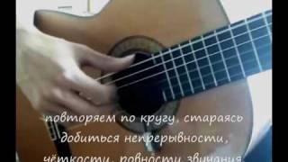 Видеошкола. Уроки игры на гитаре для начинающих. (1 из 7)