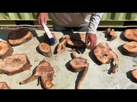 turning a few wood slices into wall art